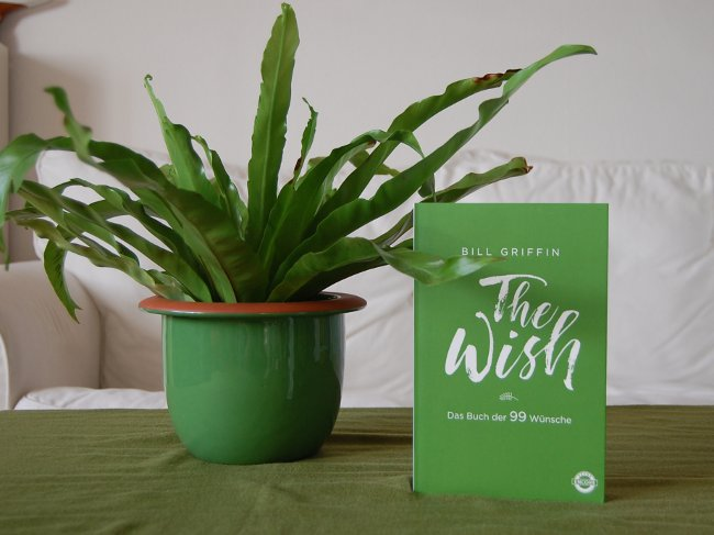 [Rezension]The Wish